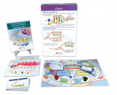 Chromosomes, Genes and DNA Curriculum Learning Module