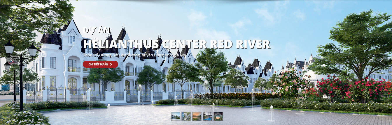 Helianthus Center Red River